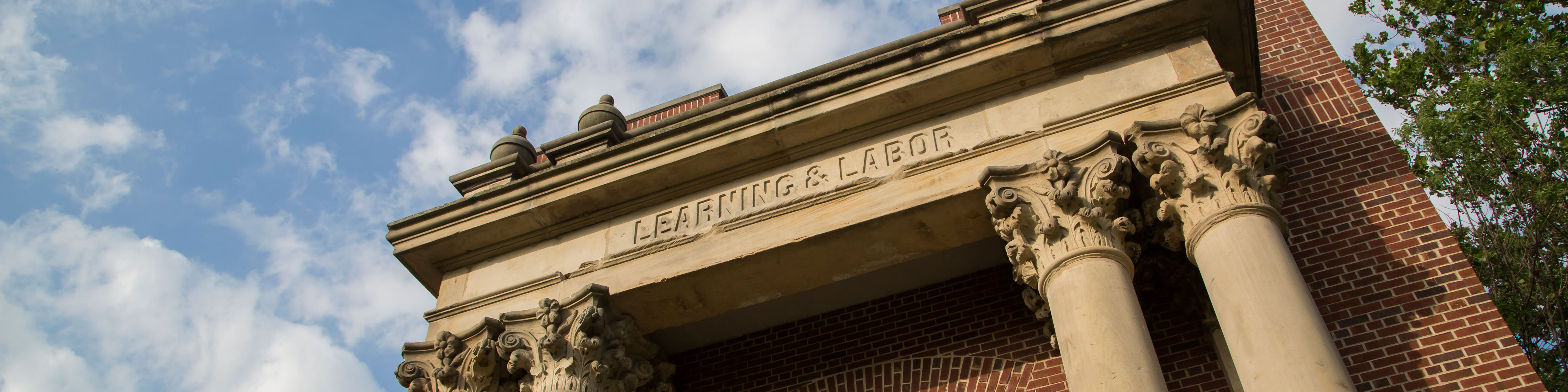 background image of learning and labor